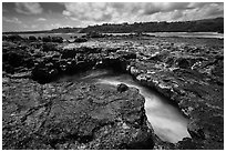 Blowhole,  Mokolea lava bench. Kauai island, Hawaii, USA ( black and white)