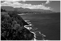 Coastline from Kilauea Point. Kauai island, Hawaii, USA ( black and white)