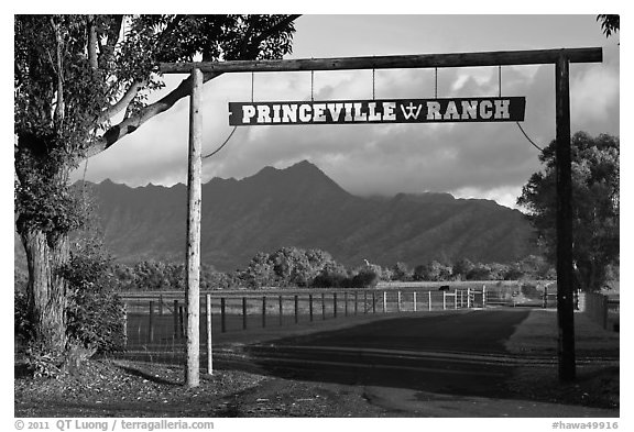 Princeville Ranch gate. Kauai island, Hawaii, USA