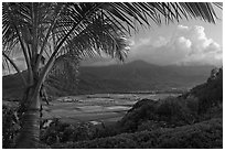 Hanalei Valley from above, sunset. Kauai island, Hawaii, USA ( black and white)