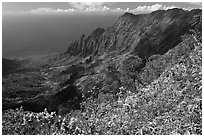 Kalalau Valley and fluted mountains. Kauai island, Hawaii, USA (black and white)