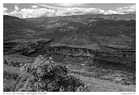 Downriver from Waimea Canyon. Kauai island, Hawaii, USA (black and white)