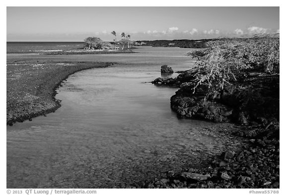 Clear water in channel, Kiholo Bay. Big Island, Hawaii, USA (black and white)