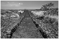 Ancient trail, Kaloko-Honokohau National Historical Park. Hawaii, USA (black and white)