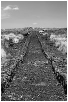 Ancient road made of lava rocks, Kaloko-Honokohau National Historical Park. Hawaii, USA (black and white)