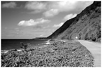 The road between Fitiuta and Luma. American Samoa (black and white)