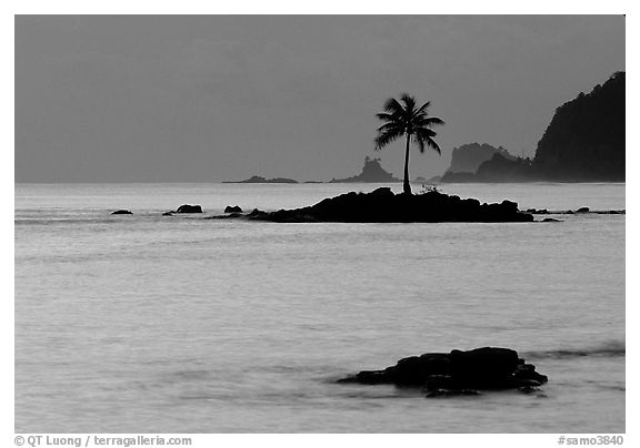 Lone coconut tree on a islet in Leone Bay, dusk. Tutuila, American Samoa (black and white)