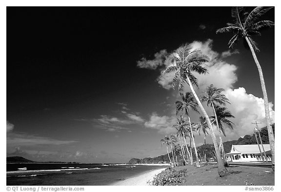 Palm-lined beach in village of Auasi. Tutuila, American Samoa (black and white)