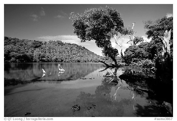 Pala quicksand lake. Aunuu Island, American Samoa (black and white)