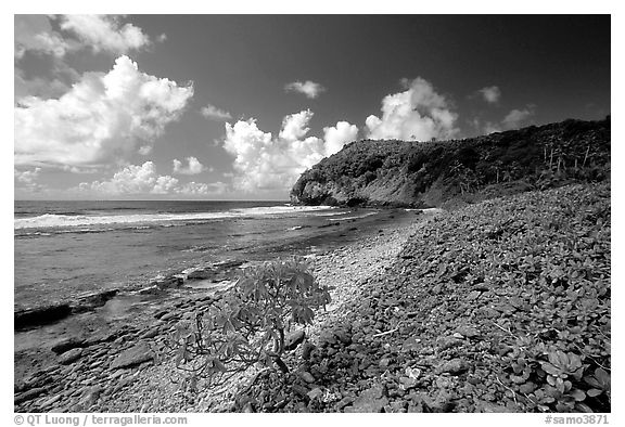 North shore. Aunuu Island, American Samoa (black and white)