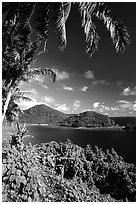 View over Masefau Bay. Tutuila, American Samoa (black and white)