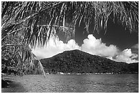 Masefau Bay and Village. Tutuila, American Samoa (black and white)
