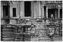 Buddhist monks on stairs, Angkor Wat. Angkor, Cambodia ( black and white)