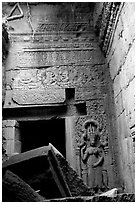 Chamber, Ta Prom. Angkor, Cambodia (black and white)