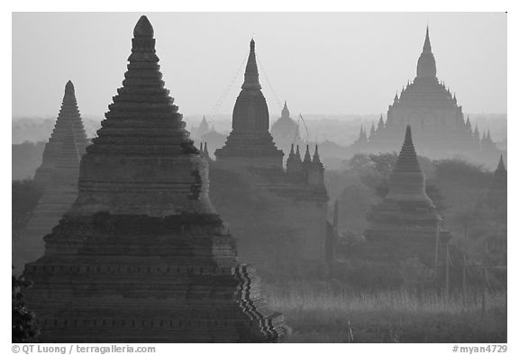 View over temples from Mingalazedi. Bagan, Myanmar (black and white)