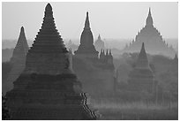 View over temples from Mingalazedi. Bagan, Myanmar ( black and white)