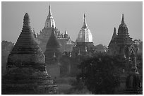 Innumerable temples seen from Mingalazedi. Bagan, Myanmar (black and white)