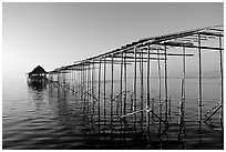 Stilts huts. Inle Lake, Myanmar ( black and white)
