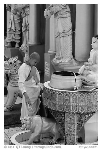 Nun pouring water at planetary post. Yangon, Myanmar (black and white)