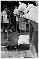 Workers load bags of rice into truck, Sinodan pier. Yangon, Myanmar ( black and white)