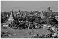 Rural scene with cattle and peasants working in fields below pagodas. Bagan, Myanmar ( black and white)