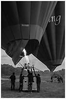Hot air balloons before take off. Bagan, Myanmar ( black and white)