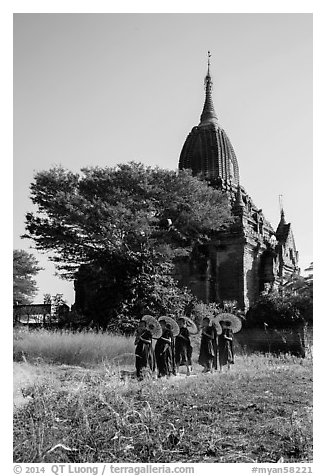 Novices holding red sun umbrellas walk from temple. Bagan, Myanmar (black and white)