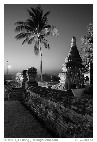 Palm tree and stupa at sunset. Bagan, Myanmar (black and white)