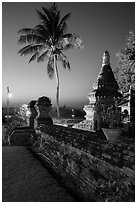 Palm tree and stupa at sunset. Bagan, Myanmar ( black and white)
