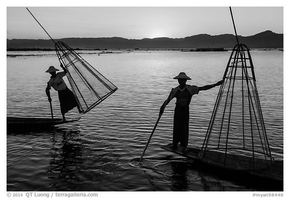 Intha fishermen lifting traditional conical net at sunset. Inle Lake, Myanmar (black and white)