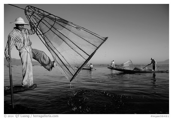 Intha fisherman lifting conical net basket. Inle Lake, Myanmar (black and white)