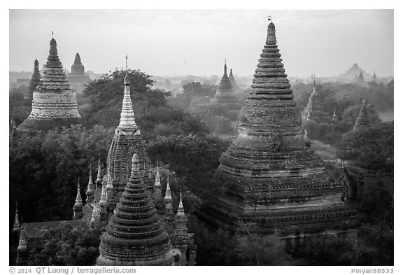 Dense array of ancient temples. Bagan, Myanmar (black and white)