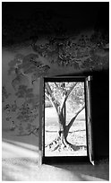 Tree seen through window. Muang Boran, Thailand (black and white)