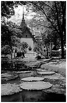Lotus pond and Ayuthaya-style temple. Muang Boran, Thailand ( black and white)
