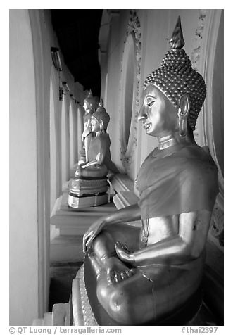 Buddhas images in gallery, Phra Pathom Wat. Nakkhon Pathom, Thailand (black and white)