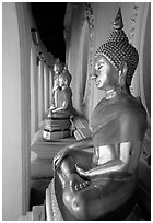 Buddhas images in gallery, Phra Pathom Wat. Nakkhon Pathom, Thailand ( black and white)