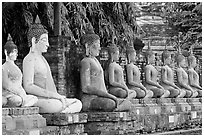 Buddha statues, swathed in sacred cloth as a sign of reverence, Wat Chai Mongkon. Ayuthaya, Thailand (black and white)