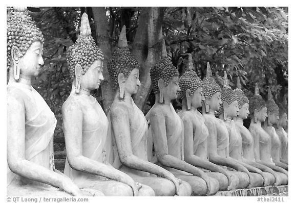 Row of Buddha images in Wat Chai Mongkon, reverently swathed in cloth. Ayuthaya, Thailand (black and white)