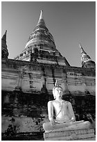 Buddha statue and Wat Chai Mongkon. Ayuthaya, Thailand ( black and white)
