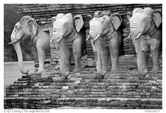 Some of the 36 elephants at the base of Wat Cahang Lom. Sukothai, Thailand (black and white)