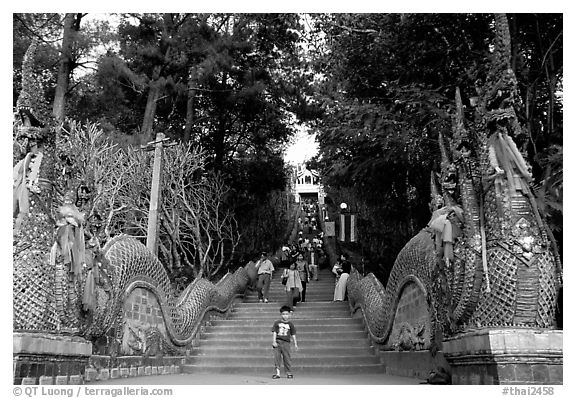 Naga (snake) staircase leading to Wat Phra That Doi Suthep. Chiang Mai, Thailand