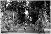 Naga (snake) staircase leading to Wat Phra That Doi Suthep. Chiang Mai, Thailand (black and white)