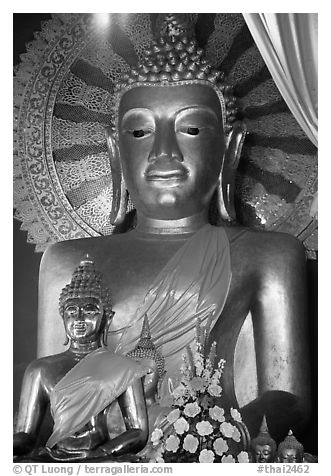 Buddha images of several sizes. Chiang Mai, Thailand (black and white)