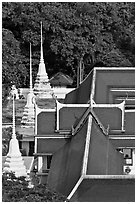 Temple and chedis from above. Bangkok, Thailand (black and white)