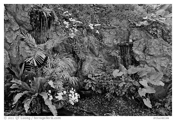 Flowers and cascade, Golden Mount. Bangkok, Thailand (black and white)