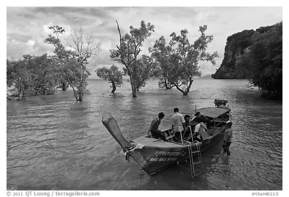 Boat boarding amongst mangroves, Ao Railay East. Krabi Province, Thailand (black and white)