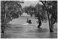 Mangroves and boat in distance, Ao Rai Leh East. Krabi Province, Thailand (black and white)