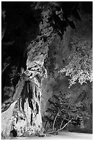 Cliff and trees at night. Krabi Province, Thailand (black and white)