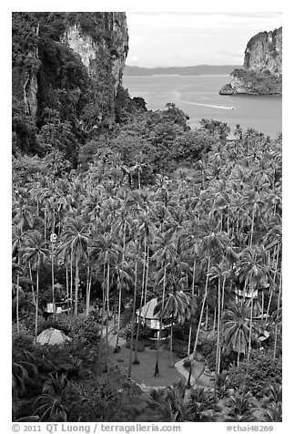 Resort huts, palm trees, and bay seen from Laem Phra Nang, Railay. Krabi Province, Thailand (black and white)
