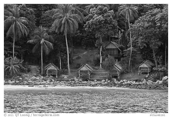 Beachfront huts and palm trees, Ko Phi-Phi Don. Krabi Province, Thailand (black and white)